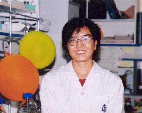 sun guang wen thesis